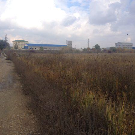 Продается земельный участок под коммерцию, 22695 кв.м., Демуса   Фото 1