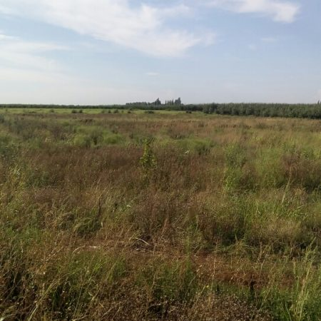 Сдается открытая площадка, 1000 кв.м., Восточный Обход   Фото 2