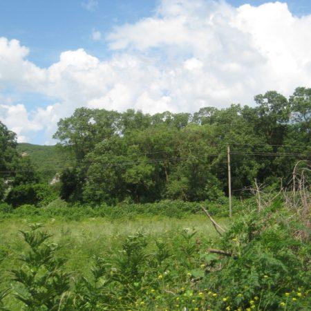 Продается земельный участок под коммерцию, 13700 кв.м., пос. Южная Озереевка | Фото 2