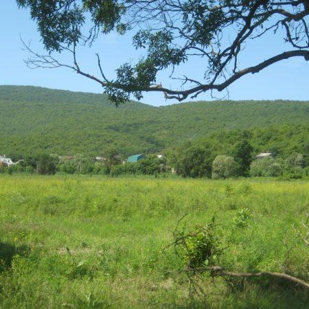 Продается земельный участок под коммерцию, 13700 кв.м., пос. Южная Озереевка | Фото 3